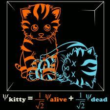 Superposition Schrodinger's Cat